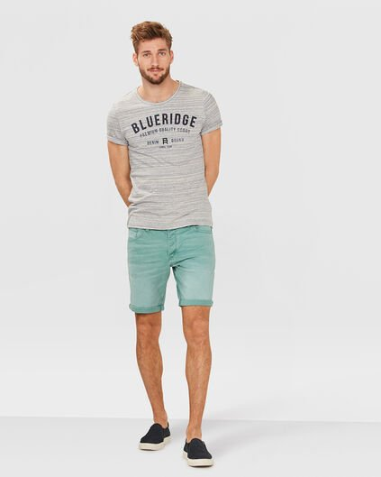 HERREN-REGULAR-FIT-SHORTS Mintgrün