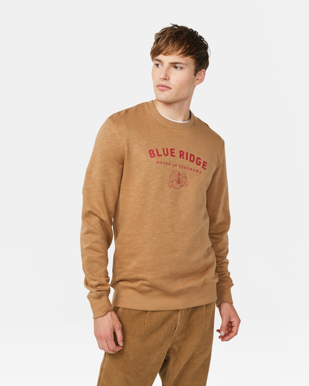 Blue Ridge Herren Sweatshirt | 94743401 WE Fashion